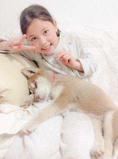 女の子と子犬の写真・画像素材[2049865]