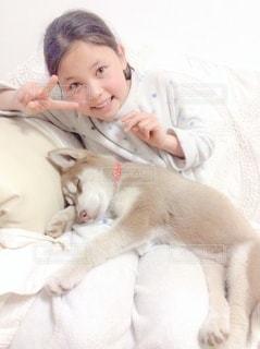 ソファーに少女と子犬の写真・画像素材[3360300]