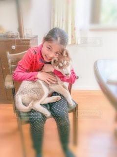 イスに座っている女の子と子犬の写真・画像素材[3360418]