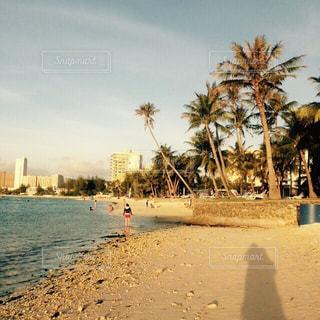 風景,海,夜景,ビーチ,景色,観光,旅行,ヤシの木,グアム,海外旅行