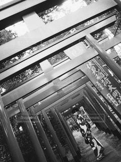 モデル 原田まぐろの写真・画像素材[1740977]