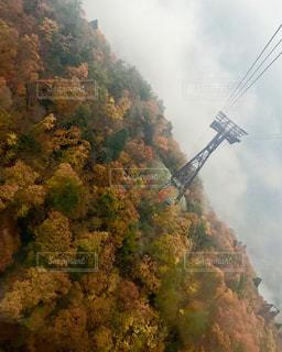 ロープウェイからの紅葉(霧)の写真・画像素材[1032862]