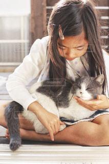 ネコも好きの写真・画像素材[1268312]