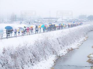 雪の中のパレットの写真・画像素材[1757979]