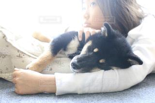 私と犬フォトの写真・画像素材[2006244]
