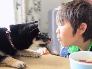私と犬フォトの写真・画像素材[2006552]