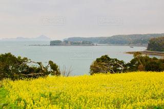 湖の前に水の大きいボディの写真・画像素材[1126133]