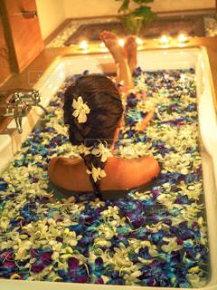 青の花風呂の写真・画像素材[1465923]