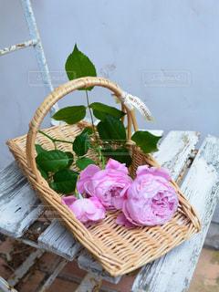 薔薇の花でいっぱいの花摘みカゴの写真・画像素材[1032359]
