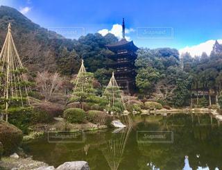 瑠璃光寺の写真・画像素材[1042339]