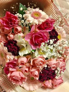 綺麗なピンクの花達の写真・画像素材[1367744]