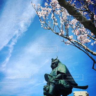 青空と武田信玄と桜の写真・画像素材[1108805]
