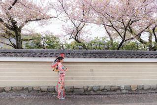 ツリーの前で立っている女の子の写真・画像素材[1036737]