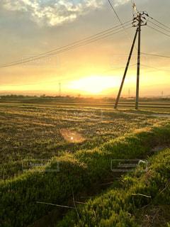 4月の終わりの田んぼの夕焼け。の写真・画像素材[1157700]
