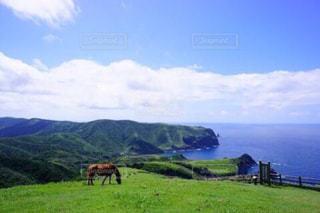 緑豊かな隠岐の島の写真・画像素材[1038244]