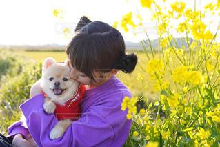 犬,菜の花,女の子,仲良し,いぬ,わんこ,dog,愛犬,姉妹,お散歩
