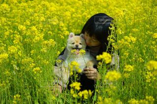 犬,菜の花,女の子,仲良し,いぬ,わんこ,dog,愛犬,姉妹,お散歩,犬と私