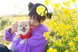 犬,菜の花,女の子,仲良し,いちご,いぬ,わんこ,dog,愛犬,姉妹,お散歩,犬と私