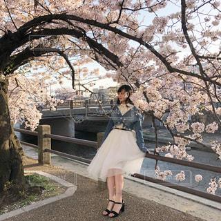 女性,春,桜,お花見,春コーデ,春コーデ2018
