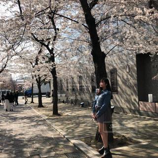 木の隣に道を歩いている人の写真・画像素材[1128348]