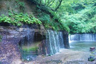 白糸の滝の写真・画像素材[2408694]