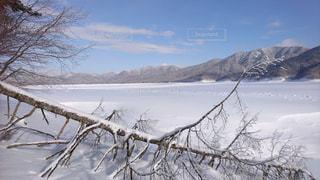 冬の北海道の写真・画像素材[1051903]