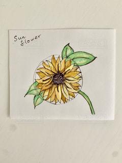 スケッチ Sun Flowerの写真・画像素材[3302428]