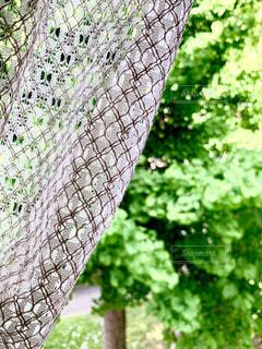 窓からの風景の写真・画像素材[3315560]