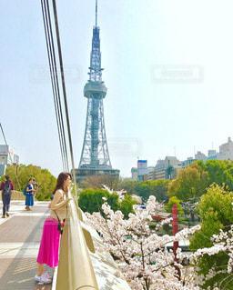 橋の上から桜を覗くの写真・画像素材[1112598]
