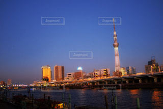 隅田川とスカイツリー。の写真・画像素材[1041328]