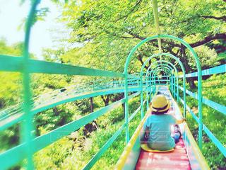 自然と公園の写真・画像素材[1164323]