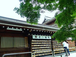 寒川神社の写真・画像素材[1216129]