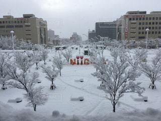 雪に覆われた建物の写真・画像素材[1039253]