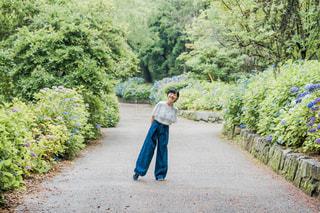 紫陽花の散歩道の写真・画像素材[1231383]