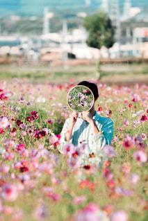 花の写真・画像素材[2650712]