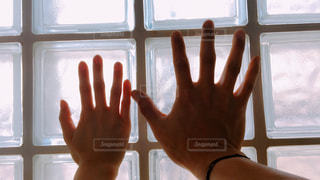 男女の手の写真・画像素材[1139941]