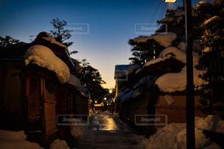 地面の雪の木 - No.1042627