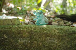 父島で見つけたガラス片の写真・画像素材[1044502]