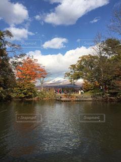 木々 に囲まれた水の体の写真・画像素材[1047697]