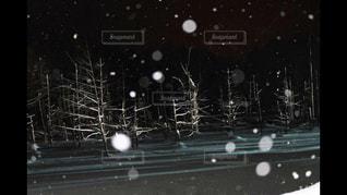 夜に着席した人の写真・画像素材[1048323]