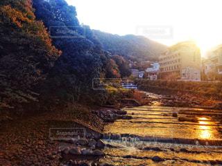 箱根の夕顔の写真・画像素材[1044359]