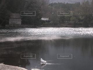冬の金鱗湖。寒いこの時期は湖面から湯気が立ち、幻想的に。の写真・画像素材[1806127]