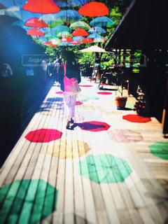傘,赤,カラフル,黄色,初夏,軽井沢,緑色,好きな景色