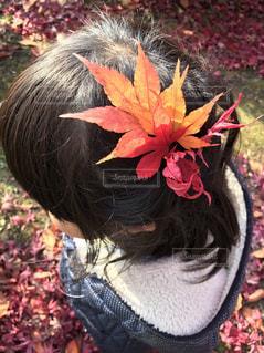 自分で選んだお気に入りの髪飾り(もみじ)の写真・画像素材[1050134]