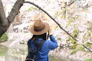 春の写真・画像素材[403624]