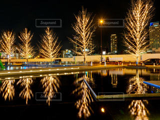 冬,夜,屋外,水面,樹木,イルミネーション,都会,リフレクション,明るい,点灯,グランフロント大阪,うめきた広場,シャンパンゴールド