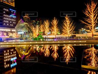 冬,夜,夜景,大阪,樹木,イルミネーション,リフレクション,明るい,点灯,グランフロント大阪,うめきた広場,シャンパンゴールド