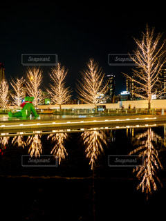 夜,夜景,屋外,大阪,水面,樹木,イルミネーション,照明,リフレクション,明るい,グランフロント,景観,グランフロント大阪,うめきた広場,シャンパンゴールド