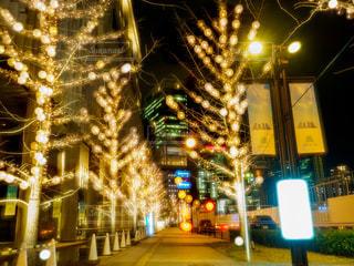 夜,夜景,屋外,大阪,樹木,イルミネーション,都会,明るい,グランフロント,アンバサダー,グランフロント大阪,シャンパンゴールド