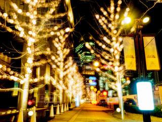 建物,夜,夜景,屋外,樹木,イルミネーション,都会,明るい,グランフロント,アンバサダー,グランフロント大阪,シャンパンゴールド,クリスマス ツリー